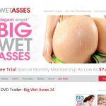 Bigwetasses Trial Price